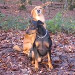 Benny und Nico