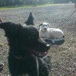Mila und Enny