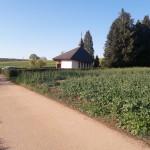 Zum Vogelsborn - Eiweiler Kapelle
