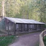 Kallenborn Vogelhaus